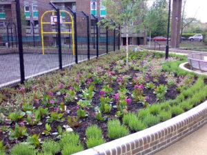 Commercial Garden Landscape Design in Ipswich & Colchester