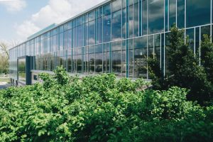 The Importance of Landscaping for your Business | Greengrass Ltd Suffolk & Essex