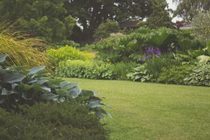 Greengrass Ltd make landscaping your garden easy! Contact us about your garden in Suffolk & Essex
